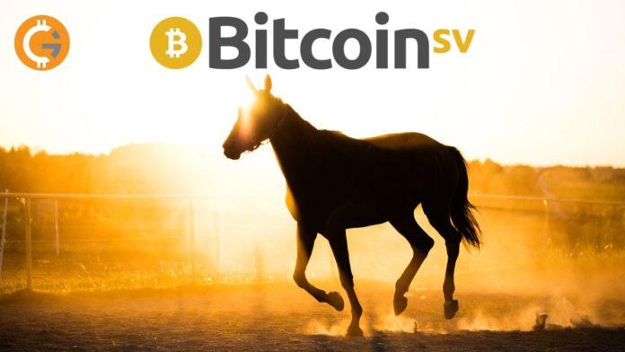 Bitcoin SV's Thunders Past $350, Unprecedented 100% Surge