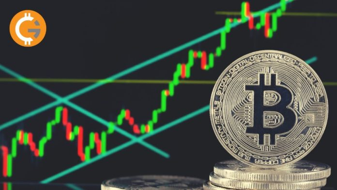 Bitcoin Crossed $9,000 Mark, Is This a Bitcoin Halving Effect