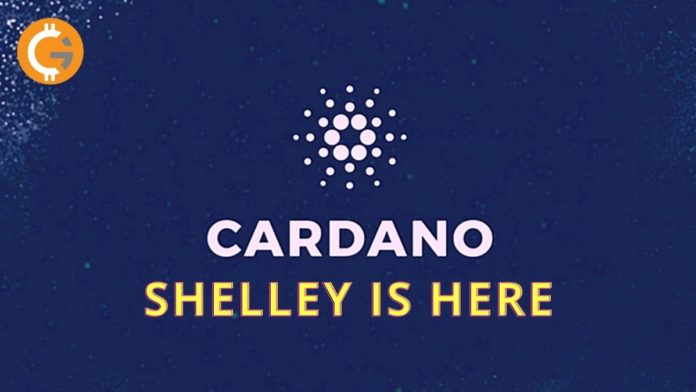 Cardano Introduces Shelley Hard Fork After 5 Years of Development